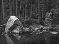 20151201-Yosemite-Merced--IMG_4515-17-crop12x15-BW-