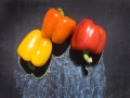 20040605peppers6432_7x9_